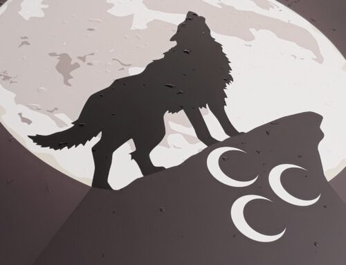Verbot der rechtsextremen 'Grauen Wölfe' – auch in Deutschland